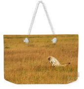 Jumping Coyote Weekender Tote Bag