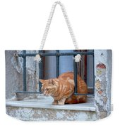 Just Curious Cat Weekender Tote Bag