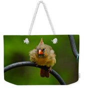 Just Doing A Little Feather Fluffing Weekender Tote Bag