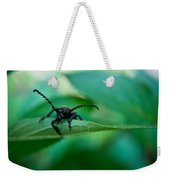 Just Looking For Another Beetle Weekender Tote Bag
