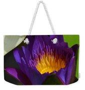 Just Opening Purple Waterlily -  Square Weekender Tote Bag