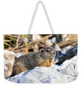 Just Relaxing Weekender Tote Bag