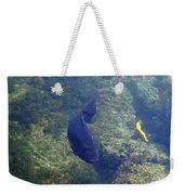 Just Swimming Around Weekender Tote Bag