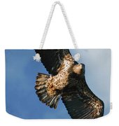 Juvenile Bald Eagle Two Weekender Tote Bag
