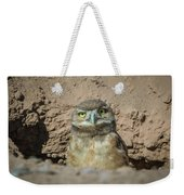 Juvenile Burrowing Owl-img_164817 Weekender Tote Bag