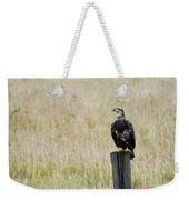 Juvenile Eagle On Post Weekender Tote Bag