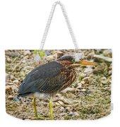 Juvenile Green Heron Weekender Tote Bag