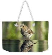 Juvenile House Sparrow 0689 Weekender Tote Bag