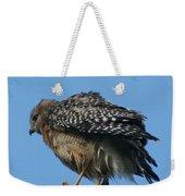 Juvenile Red-shouldered Hawk Weekender Tote Bag