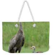 Juvenile Sandhill Crane With Protective Papa Weekender Tote Bag