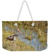Juvenile White Ibis In The Everglades Weekender Tote Bag