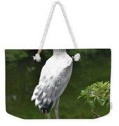 Juvenile Wood Stork Weekender Tote Bag