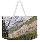 K-country And Bighorn Sheep Weekender Tote Bag