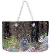 Kangaroo In The Forest Weekender Tote Bag