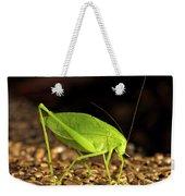 Katydid Close Up Bug Weekender Tote Bag