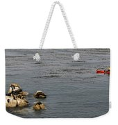 Kayakers And Seal Lions Weekender Tote Bag