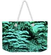 Kealakekua Plate Coral Weekender Tote Bag