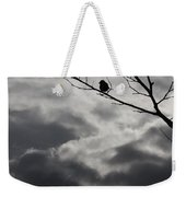Keeping Above The Storm Weekender Tote Bag