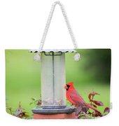 Kentucky Cardinal  Weekender Tote Bag