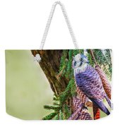 Kestrel On The Cones Weekender Tote Bag