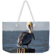 Key Largo Florida Yellow Headed Pelican Weekender Tote Bag