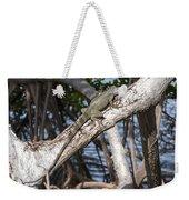 Key West Iguana In Mangrove 3 Weekender Tote Bag