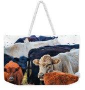 Kibler Valley Cows Weekender Tote Bag