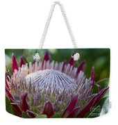King Protea Island Flowers Jewel Of The Garden Weekender Tote Bag