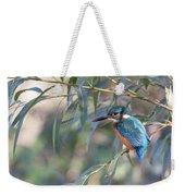 Kingfisher In Willow Weekender Tote Bag