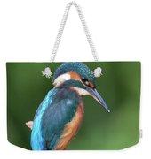 Kingfisher Watching Below Weekender Tote Bag