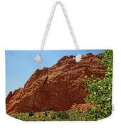 Kissing Camels At The Garden Of The Gods Weekender Tote Bag