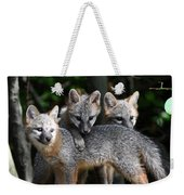 Kit Fox10 Weekender Tote Bag
