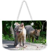 Kit Fox12 Weekender Tote Bag