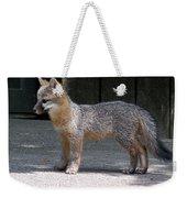 Kit Fox14 Weekender Tote Bag