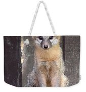 Kit Fox15 Weekender Tote Bag