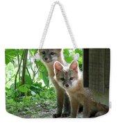 Kit Fox16 Weekender Tote Bag