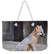 Kit Fox2 Weekender Tote Bag