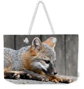 Kit Fox3 Weekender Tote Bag