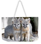Kit Fox6 Weekender Tote Bag
