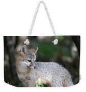 Kit Fox7 Weekender Tote Bag