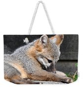 Kit Fox8 Weekender Tote Bag