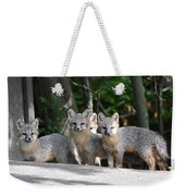 Kit Fox9 Weekender Tote Bag
