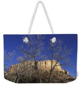 Kitchen Mesa And Bare Cottonwood Trees Weekender Tote Bag