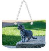 Kitten 1 Weekender Tote Bag