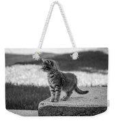 Kitten 2 Weekender Tote Bag