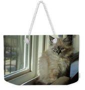 Kitten Daydreams Weekender Tote Bag