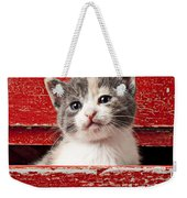 Kitten In Red Drawer Weekender Tote Bag by Garry Gay
