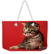 Kitten On Red Weekender Tote Bag