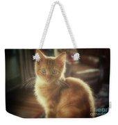 Kitten Portrait Weekender Tote Bag