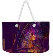 Kitten Red Cat Cat Tom Cat Pets  Weekender Tote Bag